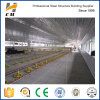 Factory Produced Low Cost Structural Steel Sturcuture Poultry Shed/Farm/House/Building