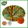 Pure Seabuckthorn Seed Oil/Seabuckthorn Seed Oil Extract
