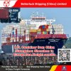 LCL Container from China/Guangzhou/Shenzhen to Marseilles/France/Europe Sea Freight service