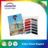Custom Pamphlet Printing Pantone Color Card