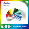 Gsb Standard Colour Fandeck for Gloss Floor Paint
