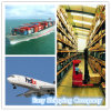 Consolidate Reliable Cargo Container Service From China to UK