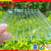 PC Plastic Panels Polycarbonate Sheet for Greenhouse Roofing