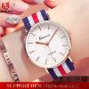 Fashion Style Unisex Nylon Belt Nato Strap Band Quartz Wrist Dw Geneva Watch V-166