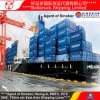 Shenzhen to Thailand Bangkok Sea Freight LCL Consolidation Container Warehouse Shipping agent