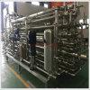 Papaya Pulp Processing Plant & Papaya Puree Making Machinery