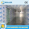 Containerized Freezer for Meat/Fish