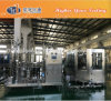 Complete Pet Bottle Carbonated Drinks Filling Line