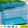 Blue Color Pet Carrier Bird Nest Made in Good Factory