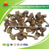 Manufacturer Supplier Dried Organic Agaricus Blazei Murrill