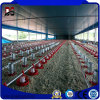 Prefab Steel Buildings Steel Chicken Farm House Made in China
