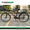 Electric Bicycle with Rear Brushless Motor (SPC-005)