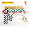 Ve Bosch Injector Pump Seal Kit-Diesel Injector Pump Suppliers