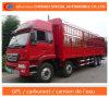HOWO 8X4 Camion De Fret Cargo Truck