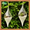 Florero de cristal transparente de la forma verde oliva