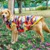 大きい動物の飼い犬のための新しいDeisgn大きいペット衣服