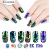Magic Chromashift flocons fabricant de pigments d'ongles