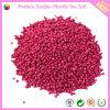 Rosa Masterbatch rosso per materia prima di plastica