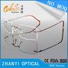 Nessun telaio dell'ottica Eyewear di vetro di titanio semplici del monocolo di MOQ con colore di duo (5532)