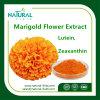 Zeaxantina de calidad superior natural pura con el mejor extracto de la planta del extracto de la flor de la maravilla del precio