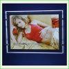Cartel de acrílico de la exhibición del cartel Bolso ligero del LED (CDH03-A3L)