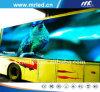 Tela de exposição móvel do diodo emissor de luz de Shenzhen Mrled P16