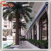 호텔 훈장 인공적인 대추 야자 나무