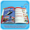 Chinese Factory Professional Printing Softcover Photo Book Company