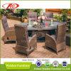 Conjunto de cena de mimbre de los muebles de la rota del patio (DH-8620)
