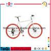 새로운 Design Alloy 700c Fixed Gear Bike 또는 Fixie Bicycle