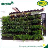Piantatrice verticale del giardino del supporto della parete di Onlylife