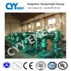 Compresor de aire sin aceite del nitrógeno del argón del oxígeno del pistón de Zr315 VSD
