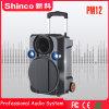Shinco 12 専門のBluetoothのトロリーカラオケのスピーカー