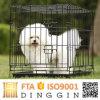 Haustier-Bildschirmanzeige-Rahmen für kleinen Hund