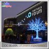 Для использования вне помещений 3D синего цвета дерева Рождество света для Super рынка
