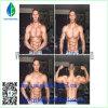99% قابل للحقن سترويد تستوسترون [سوستنون] 250 لأنّ عضلة بناية [كس]: [نولّ]
