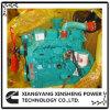 Dcec motor Diesel Cummins B3.9 4-G1 24kw/1500rpm para grupo electrógeno