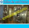 Double moule en plastique Facotry de ménage de couleur d'Injetion
