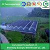 2017 de Plastic Serre van de multi-Spanwijdte met Hydroponic Systeem