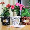 Дружественность к окружающей среде индивидуальные различных цветов ивы ваза цветов для дома украшения