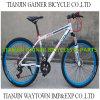 Tianjin 26  MTB/Mountain Bicycle 21s
