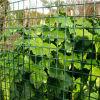 プラスチック正方形の網の使用法の農場および庭の塀