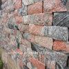 Mattonelle rustiche del pavimento non tappezzato della parete del rivestimento del granito rosso della Cina Juparana