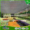 Réseau UV d'ombre d'agriculture de Sun de HDPE anti pour que la Chambre verte protège des centrales