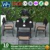 A tabela de jantar ajusta o assento quadrado da tela das cadeiras laterais de tabela de jantar da mobília do jardim
