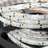 Luz de tira 12V impermeable RGB SMD5050 LED flexible