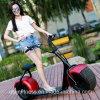Scooter électrique de bicyclette de 2017 de vente de moto cocos électriques chauds de ville fait dans la fabrication d'usine