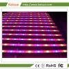 Accesorio de iluminación de LED profesional con 8 lámparas de equipos para plantas que crecen