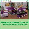 Sofà di cuoio stabilito di Miami della mobilia del salone
