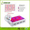 Augmenter la lumière à LED à spectre complet pour les plantes de serre hydroponique